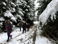2017-12-09 Hike Ratingen and surroundings. Reader-37.png