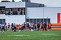 2019 Cleveland Browns Training Camp (48532080626).jpg