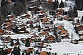 2020-01-13 2nd run Men's Giant Slalom (2020 Winter Youth Olympics) by Sandro Halank–0674.jpg