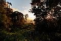 237, Taiwan, 新北市三峽區有木里 - panoramio (2).jpg