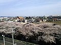 2 Chome Maru, Ōguchi-chō, Niwa-gun, Aichi-ken 480-0145, Japan - panoramio.jpg