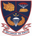 2d Aerial Port Squadron.PNG