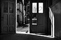 3624ab Świdnica. Foto Barbara Maliszewska.jpg