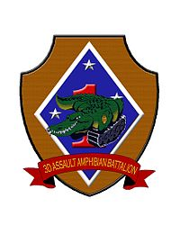 3rdAAVinsignia