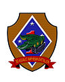 3rdAAVinsignia.jpg