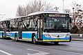 5636404 at Liqiao (20200116155555).jpg