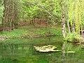 61-105-0042 Парк у Раю.jpg