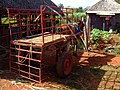 AJM 011 Horse Cuba.JPG