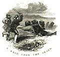 A Raid Upon the Seals.jpg