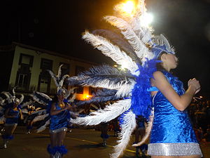 Carnival of Madeira - A dancer in the 2013 carnival of Madeira