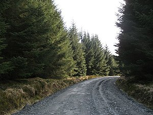 A regraded road - geograph.org.uk - 749592