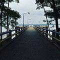 A walk on the bridge.jpg