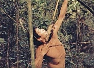 Aché - Aché man aiming into the canopy