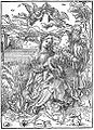 Albrecht Duerer- Holy Family with Three Hares.JPG