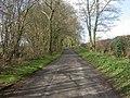 Alderholt, lane - geograph.org.uk - 1245382.jpg