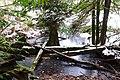 Alice lil lake - panoramio.jpg