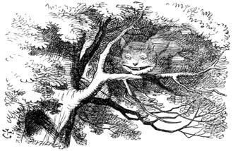 Dream world (plot device) - The Cheshire Cat vanishes in Wonderland.