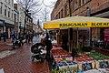 Alkmaar - Laat - The First Signs of Springtime.jpg