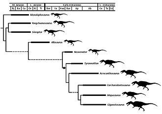 Allosauroidea - The cladogram of the classification of Allosauroidea