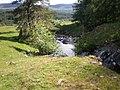 Allt na Muic near Balnacarn - geograph.org.uk - 1350241.jpg