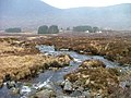 Allt nan Giubhas - geograph.org.uk - 342432.jpg