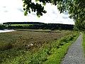 Along the Embankment, Kirkcudbright. - geograph.org.uk - 2020019.jpg