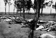 Photographie des corps de dizaines d'Arméniens dans un champ