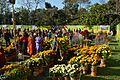 Annual Flower Show - Agri-Horticultural Society of India - Alipore - Kolkata 2013-02-10 4898.JPG