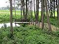 Anykščių sen., Lithuania - panoramio - VietovesLt (6).jpg