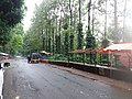 Araku Valley coffee plantations1.jpg