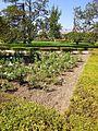 Aranjuez - Real Sitio, Jardín del Parterre 10.JPG