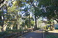 Arisugawa-no-miya Memorial Park - DSC06863.JPG