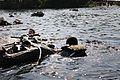 Army-Coast Guard Water Survival Training 160630-A-AM237-005.jpg