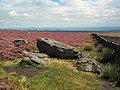 Ashlar Chair, Rombalds Moor - geograph.org.uk - 44714.jpg