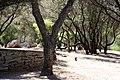 Athens 09 2013 - panoramio (13).jpg