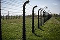 Auschwitz - panoramio (57).jpg