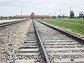 Auschwitz last stop.jpg
