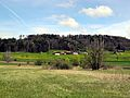 Auslikon - Strandweg 2012-04-19 13-51-18 (P7000).JPG
