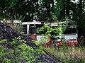 Ausrangierte Busse, Freiheit, Nähe Klärwerkstraße, Berlin-Spandau, Bild 2.jpg