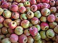 Australian apples for sale at store.jpg