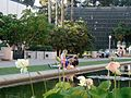 Balboa Park San Diego - panoramio.jpg