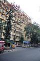 Ballygunge Science College - 35 Ballygunge Circular Road - Kolkata 2014-02-26 3845.JPG