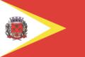 Bandeira Coronel Macedo.png
