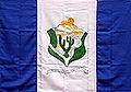 Bandeira petrolandia.jpg