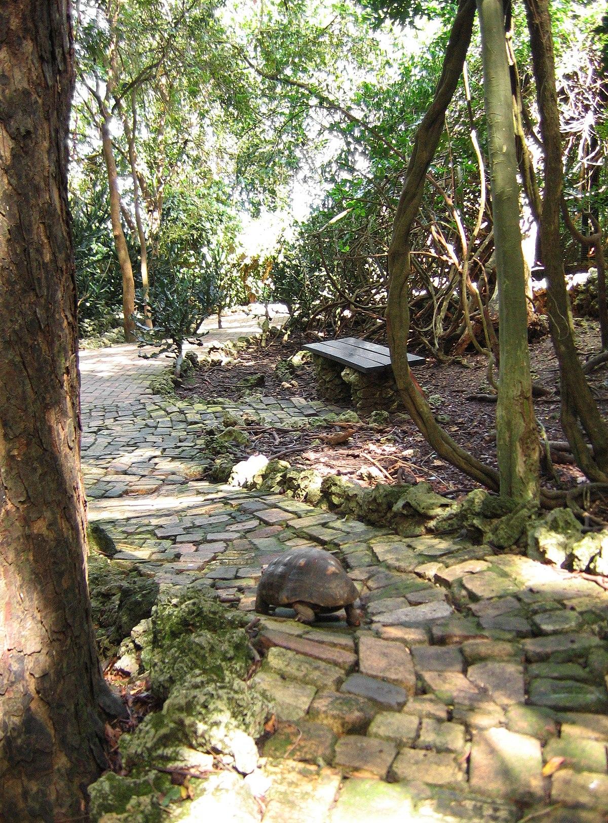 Barbados Wildlife Reserve Wikipedia