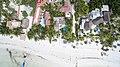 Beach Holbox Mexico arerial - Luftbild (19990953908).jpg
