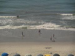 Beachcombers at Myrtle Beach, 2012 IMG 4504.JPG