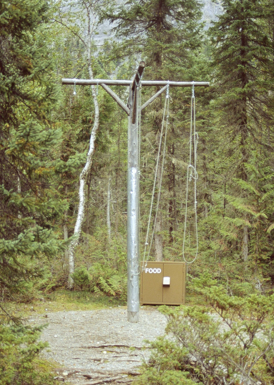 Bear Pole – Wikipedia
