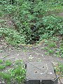 Beck and manhole cover, Backhouse Wood - geograph.org.uk - 821883.jpg