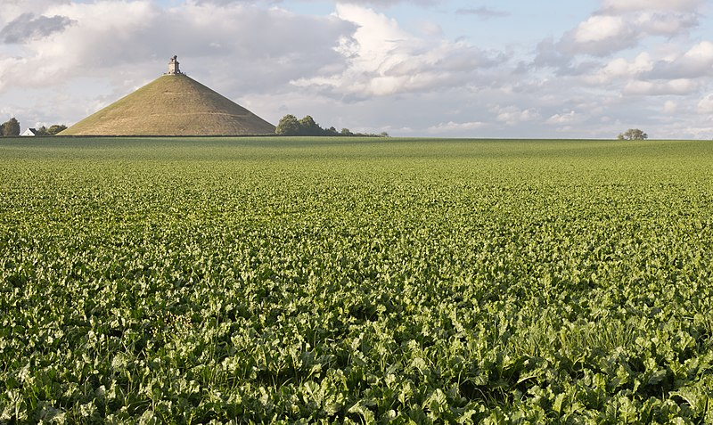 File:Belgique Butte du Lion dit de Waterloo.jpg